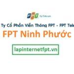 Lắp Đặt Mạng Fpt huyện Ninh Phước tỉnh Ninh Thuận