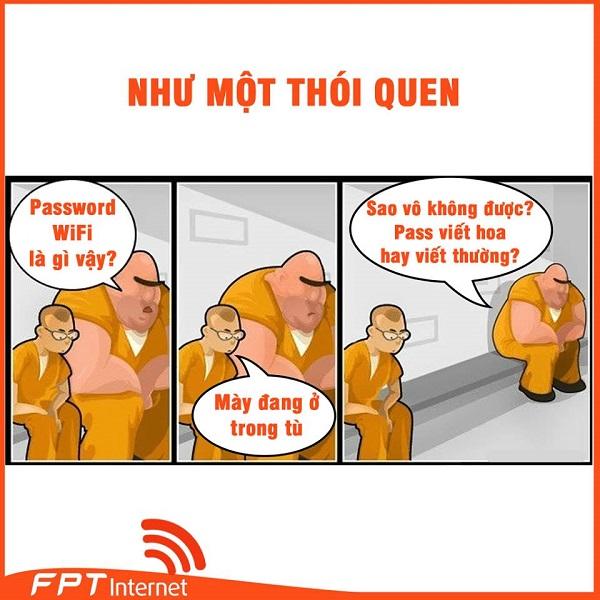 Lắp Đặt WiFi FPT Huyện Hoành Bồ