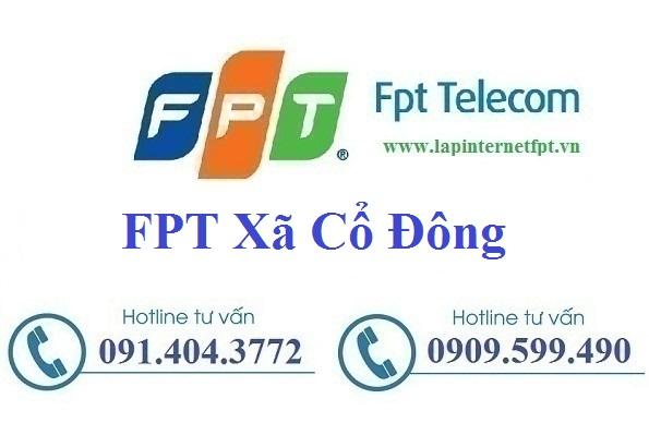 Đăng ký cáp quang FPT xã Cổ Đông