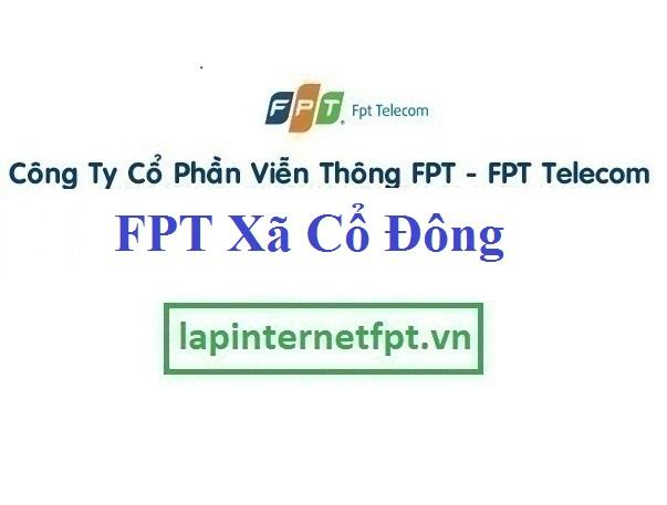 Lắp Đặt Mạng FPT Xã Cổ Đông Thị Xã Sơn Tây Hà Nội
