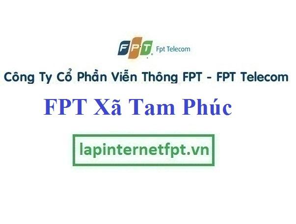 Lắp Đặt Mạng FPT xã Tam Phúc tại Vĩnh Tường tỉnh Vĩnh Phúc