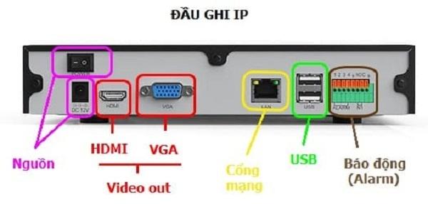 Cắm đầu RJ45 vào cổng mạng đầu ghi IP